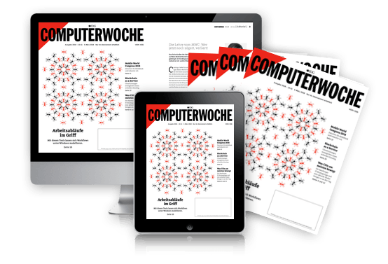 Fachartikel auf www.computerwoche.de